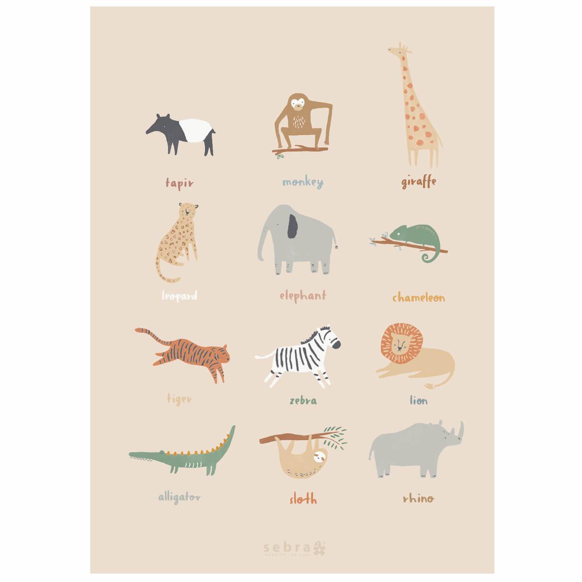 Poster WILDLIFE Sebra